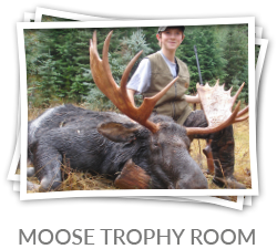 moose-trophy-room